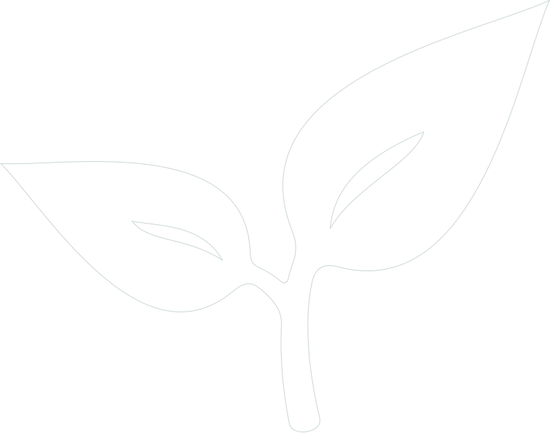 green_background_shape.png